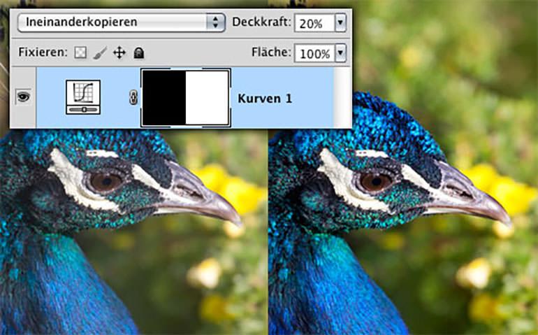 """Ebenenpalette im Modus """"Ineinanderkopieren"""" und Vorher-Nachher-Ansicht eines Fotos."""