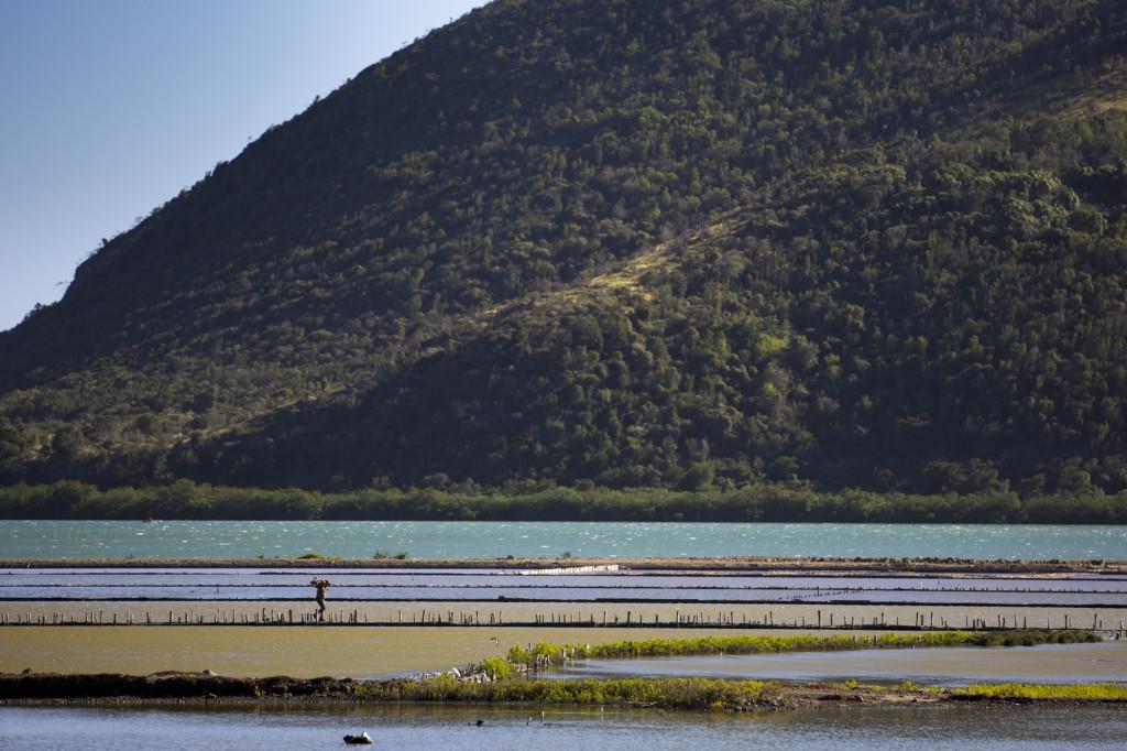 Bunt gefärbte Plantage an der Südostküste Kubas.