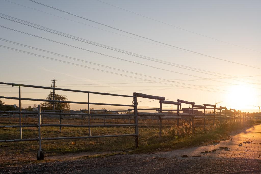 Weidezaun im Sonnenuntergang