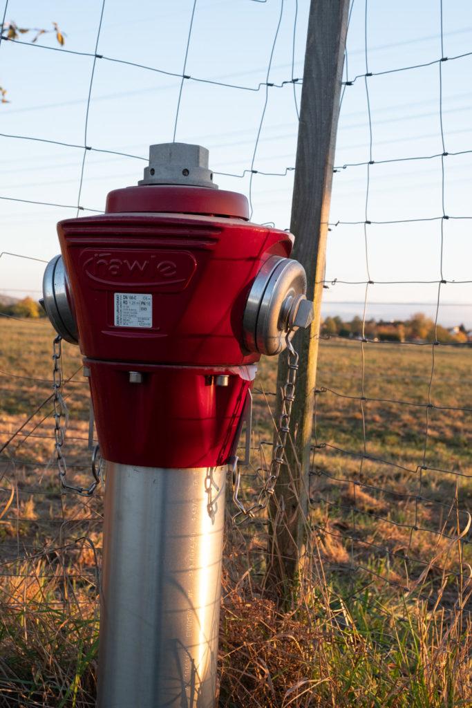 Hydrant an einer Weide